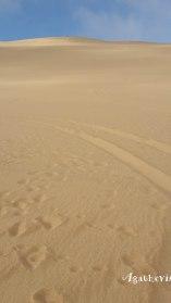 2016NA0930-Swakopmund-Dunes desert Eliot Nelson
